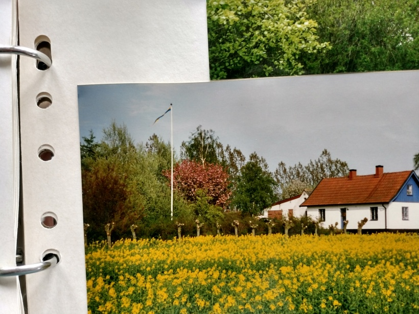 20180327 Mot hus o trädgård 1996