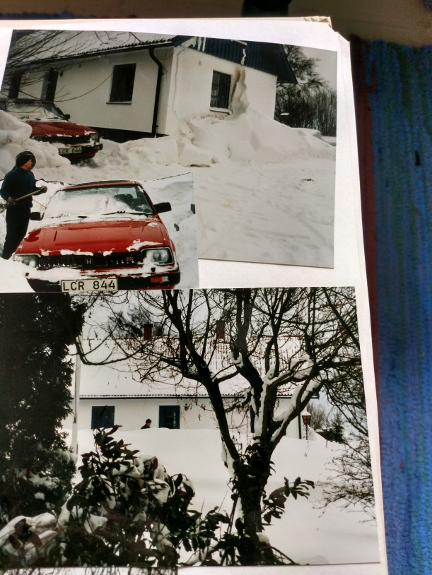 20180327 Vintern 1996