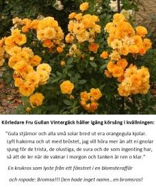 Fru Gullans kvällskör