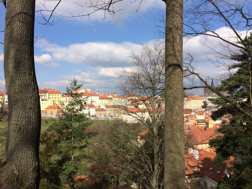 Utsikt mot slottet Prag-15