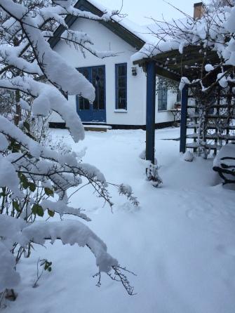 Snö i januari -16