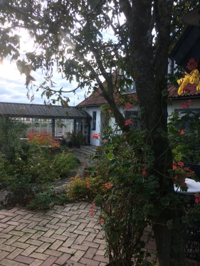Innergården från vinterträdgården