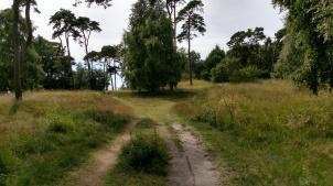 Lilleskog