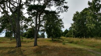 Cykelvägen vid Lilleskog