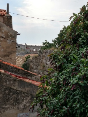 20181021 Dubrovnik 5