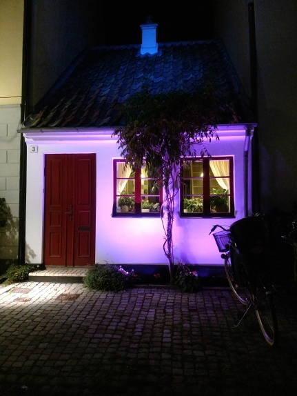 20180915 Minsta huset
